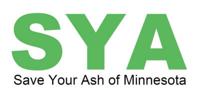 Save Your Ash of MN